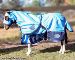 Mini Summer Paddock Hood 42 No Fill Baby Blue With Navy Trim 900 Denier Satin Lined Shoulders A Great Rug For Shows Or Every Day Use Not Included